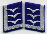 Sanitäts-FELDWEBEL-Kragenspiegel-Luftwaffe-medical-collar-tabs-Maresciall.jpg