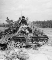 Panzer_I_befehl_camouflaged.jpg