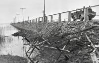 Советский автомобиль-амфибия Ford GPA «Seep» едет по дамбе Муху (Моон) – Сааремаа (Эзель) в Моонзундском архипелаге. Октябрь 1944 года..jpg