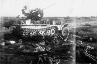 Тела убитых солдат и подбитая зенитно-самохдная установка Sd.Kfz. 105, подбитая в ночном бою под Техумарди, на острове Сааремаа (Эзель)..jpg