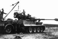 03_tank_tiger11.ctn87dll6og84s0sww0csw4c.ejcuplo1l0oo0sk8c40s8osc4.th.jpeg