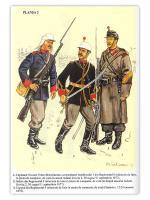 armata-romana-plansa-2-296.jpg
