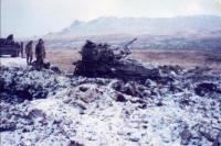 skorpion-mina-argentina-357779.png