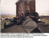 FalklandIslands2013.jpg
