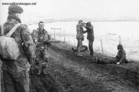 Falklands_War_Three_Argentine_Marine_Infantry_soldiers_being.jpg