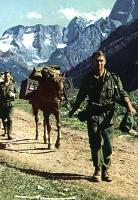 Немецкие горные части на Кавказе. 1942 г..jpg